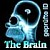 ### Super News bei Elephant Seven AG ### The Brain