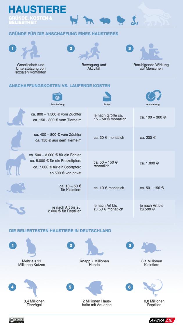 Haustierkosten-Guide