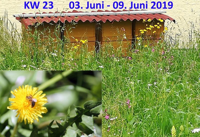 aktuelle Kalenderwoche bei Ariva - Forum - ARIVA.DE